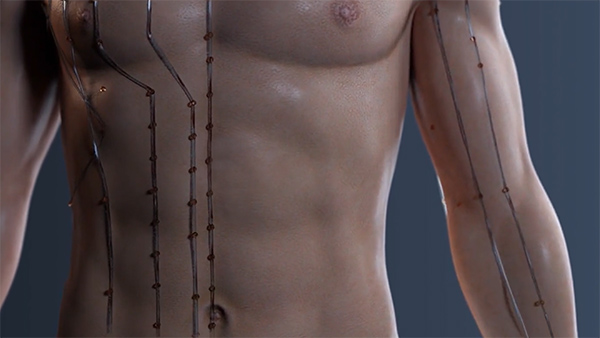 acupuncture-calgary acupuncture moxibustion